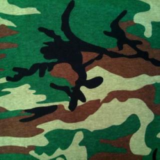 Зеленый кмф